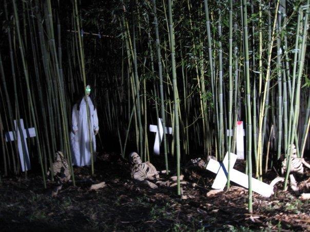 ... Bamboo Garden Nj By Bamboo Gardens Walk Of Fear Vincentown Nj Photos ...
