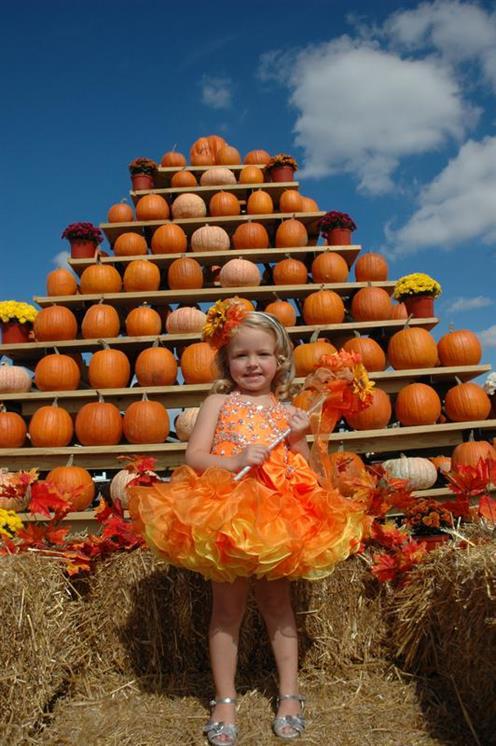 Pumpkin patch south brunswick nj